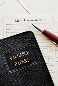 Term life insurance papers - Michigan